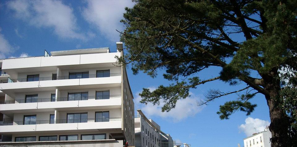 collectivités territoriales location logement adminis avocats